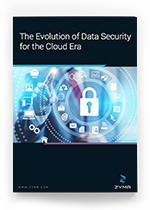 The Evolution of Data Security for the Cloud Era