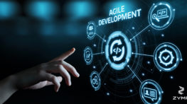 ZMYR Agile software development company