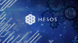 Mesos1
