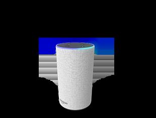 3 Amazon Echo